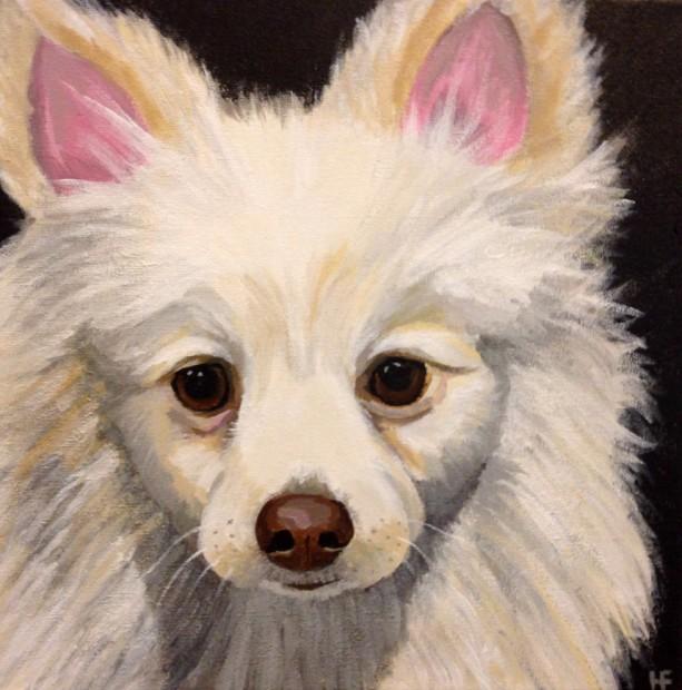 "Lance - Custom Pet Portrait 12""x12"""