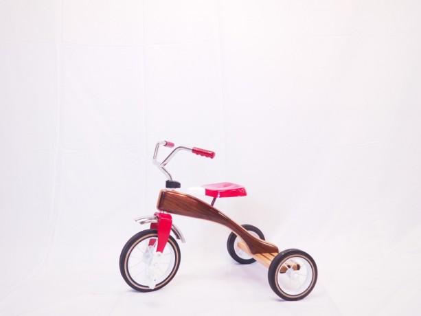 Handbuilt wooden tricycle