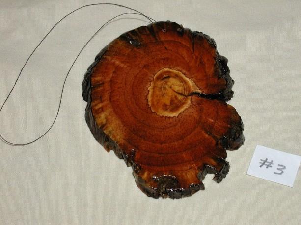 Pine Burl Slice  #3