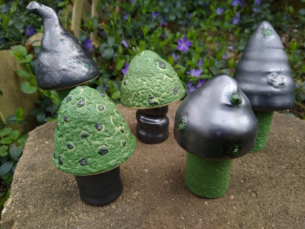 Mushroom Boxes