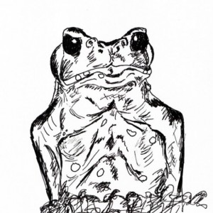 Frog Toad Amphibian Leaves Leaf Palm Tree Black and White Original Art Illustration Drawing Ink Nature Animal Decor 7 x 11