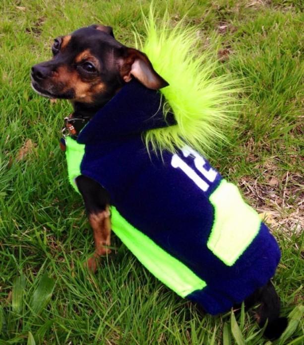 "XS Seahawks Mohawk hoodie 15-16"" girth"