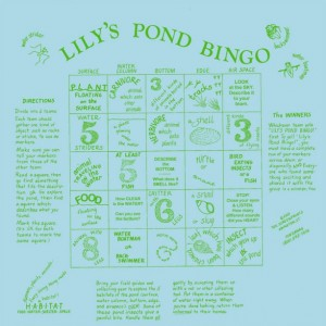 Lily's Pond Bingo