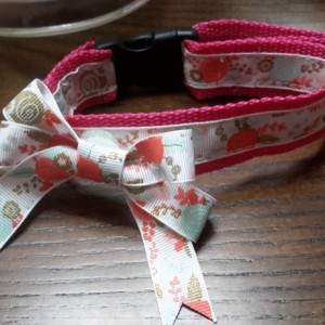 Adjustable Dog Collars with Interchangeable Bows