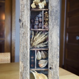 Rustic Nature Shadow Box