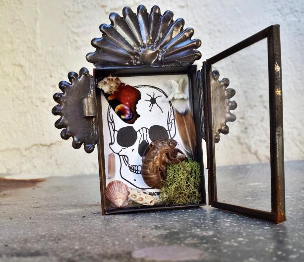 Mini Altar Natural History Terrarium Nicho Box