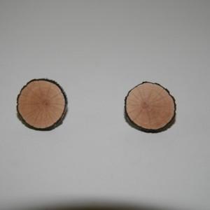 Mountain Laurel Earrings -2