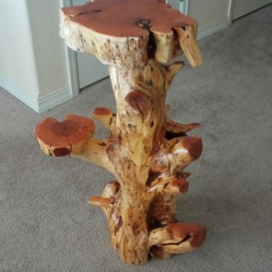 Juniper stump decor table