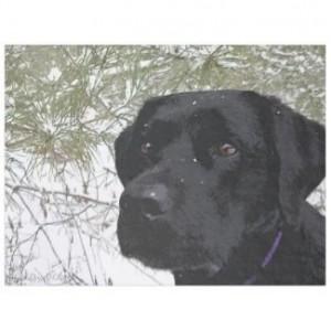 Black Labrador Throw Blanket - Black Lab Fleece Blanket - Labrador Decor - Dog Lover Gift - Lab Gift - Labrador Gift