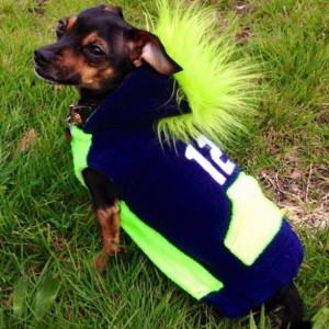 "S Seahawks Mohawk hoodie 17-18"" girth"