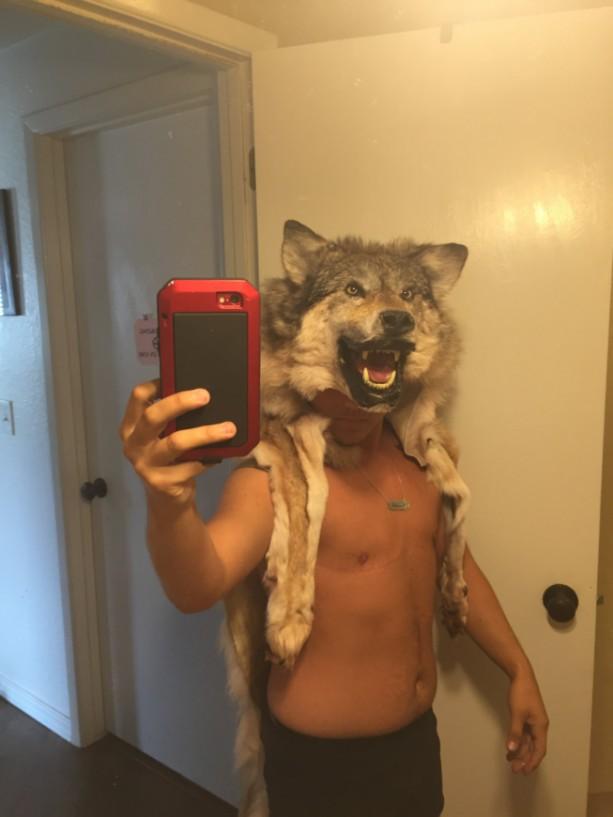 Wolf headdress mounted head w teeth feet and claws Native American Made