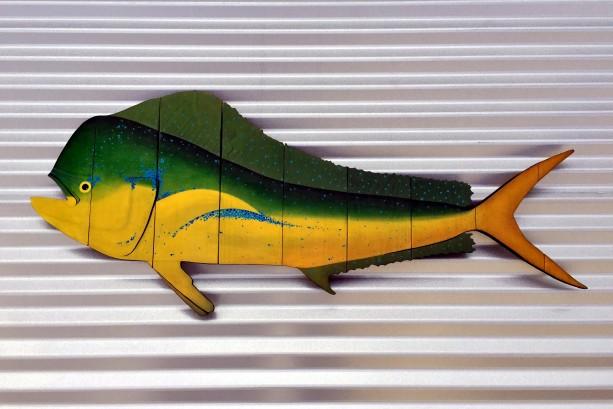 Mahi Mahi, Dolphin Fish, Dorado Wall Art for Husband, Dad ...