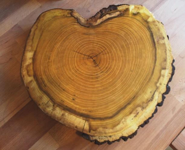 Cutting board, Rustic Cutting Board, Vintage Cake Stand, Live Edge Cutting Board, Natural Wood Serving Board,  Medium Size Cutting Board