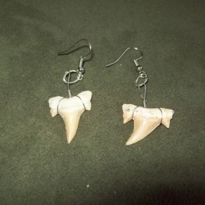 Shark tooth earrings native american made