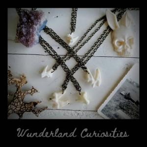 Wunderland jewelry// Coyote teeth necklace // special jewelry// oddity// taxidermy