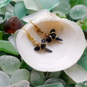Shark tooth earrings with gold wire wrapping, simple shark tooth earrings, fossil earrings, fossil jewelry, shark teeth, gold wire earrings