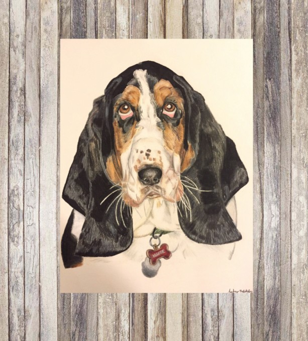 Custom Pet Portrait (8x10), Pet Portrait, Pet Portrait Custom, Custom Dog Portrait, Dog Portrait, Dog Portrait Custom