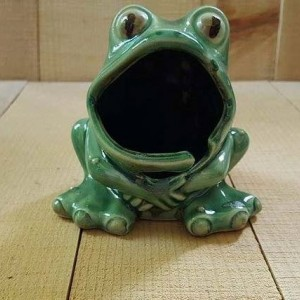 Ceramic Frog Kitchen Scrubby/ Sponge Holder w/ ring keeper