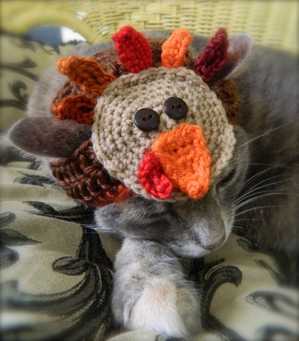 Thanksgiving Turkey Crocheted Hat for Your Cat or Small Dog - Custom Made Pet Costume  Ask a Question