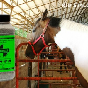 SMELLEZE Natural Horse Smell Removal Deodorizer: 2 lb. Granules Gets Stench Out Fast