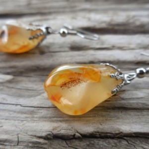 Honey Agate Earrings from Pacific Northwest