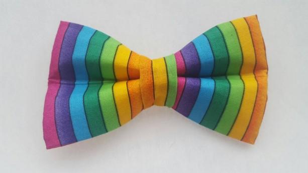 Rainbow pet bow tie