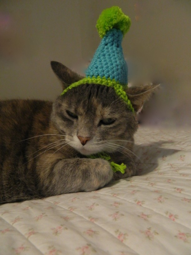 Crocheted Birthday Party Or Clown Hat For Cat Small Dog Costum