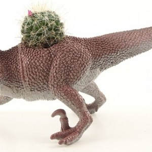 Velociraptor Dinosaur Cactus Pet Planter - Cacti, Succulent, Haworthia, Aloe, Air Plant - Raptor, Gift, Home, Office, Teen, Cubicle, Coworker, Kids