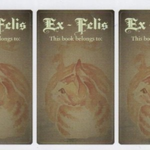 "Bookplates w/ Cat Art - Set of 5 self stick bookplates -ORANGE CAT- ""Ex Felis"" - Free cat stickers Bogo - bookworm gift -gift for cat lover"