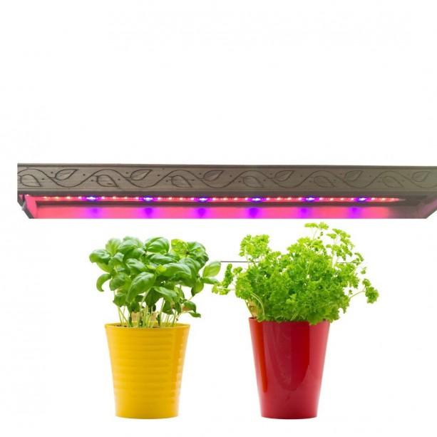 Stylish LED Plant Light