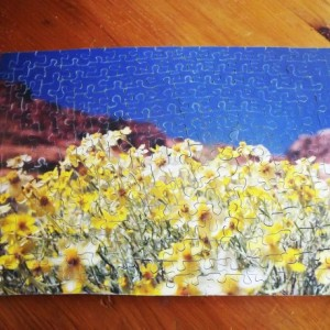 "Hand Cut Wooden Jigsaw Puzzle ""Wild Flowers in the desert"""