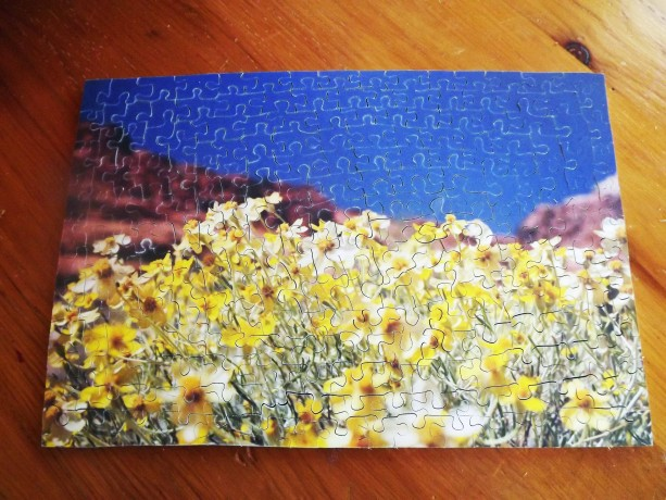 """Hand Cut Wooden Jigsaw Puzzle """"Wild Flowers in the desert"""""""