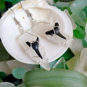 Sea glass and shark tooth earrings, clear sea glass earrings, shark tooth earrings, sea glass jewelry, Shark tooth jewelry, fossil jewelry