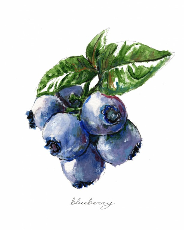... 8x10 Blueberry Print, Food Art, Food Illustration, Handwritten Art, Kitchen  Decor, ...