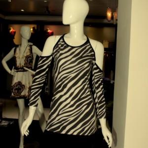 ALina Zebra