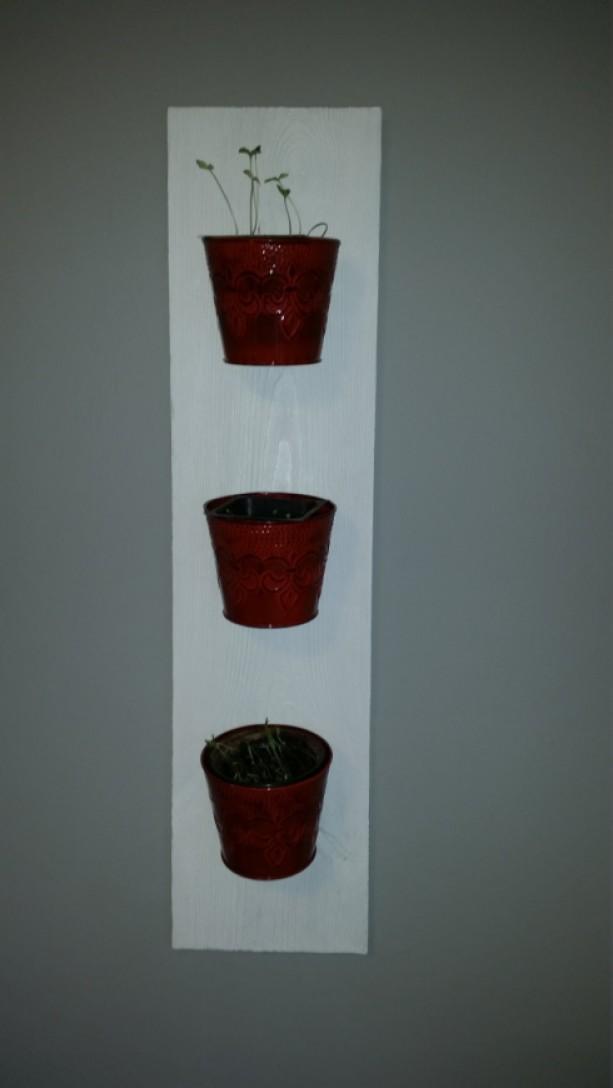 Rustic Indoor Herb Planter