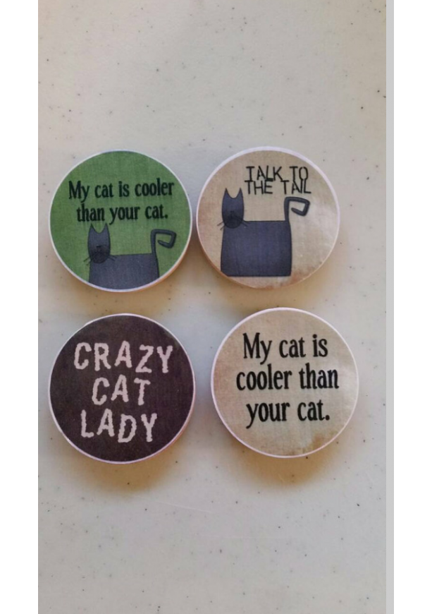 Crazy Cat Lady 2in Magnet