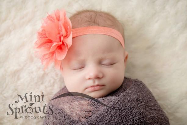 Coral baby headband,  infant headband, newborn headband, coral chiffon flower headband, photo prop, coral flower, coral headband