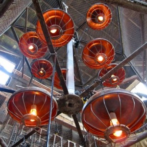 Reclaimed Industrial Chicken Feeder Hanging LIghts