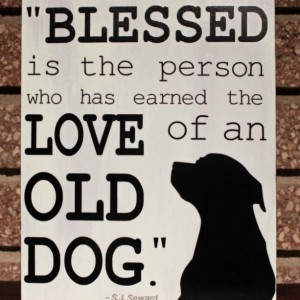 Dog Sign - Blessed is the Person Quote