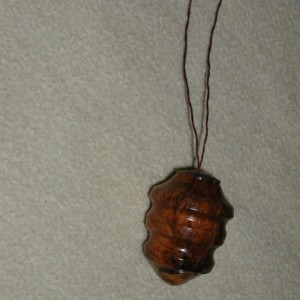 Wood Ornament Pine Burl  #8