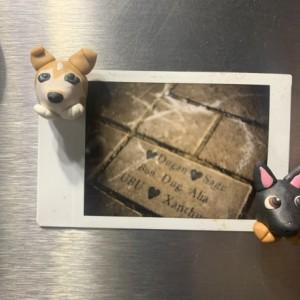 Custom Pet Magnet