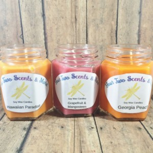 Candle Gift Set, Scented Soy Candles, Soy Wax Candles, Natural Soy Candles, Vegan Candles, Eco Friendly Candles, 6 Oz Jar Candles