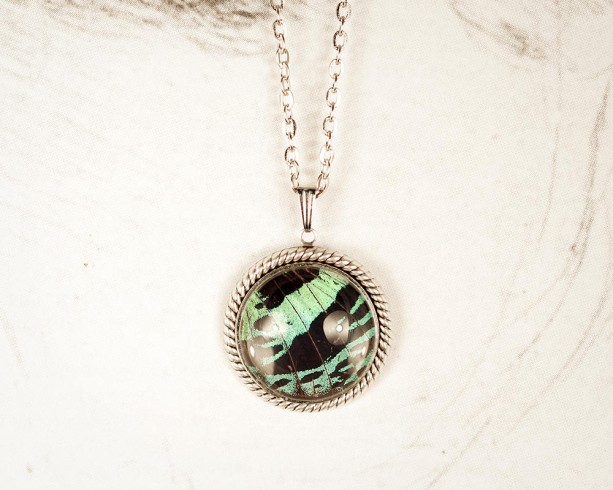 Real Butterfly Jewelry - Real Butterfly Wing Necklace - Green and Black - Real Insect Jewelry - Entomology - Gift for Her - Sunset Moth