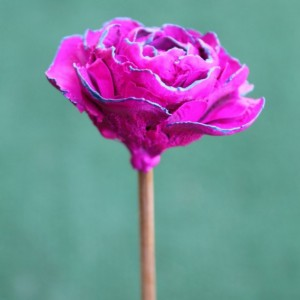 Magenta Hand-Painted Cedar Rose Pine Cone Flower