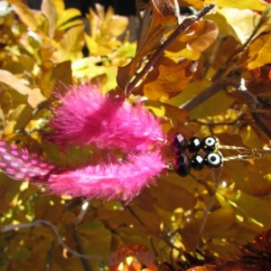 Evil eye earrings - black/pink
