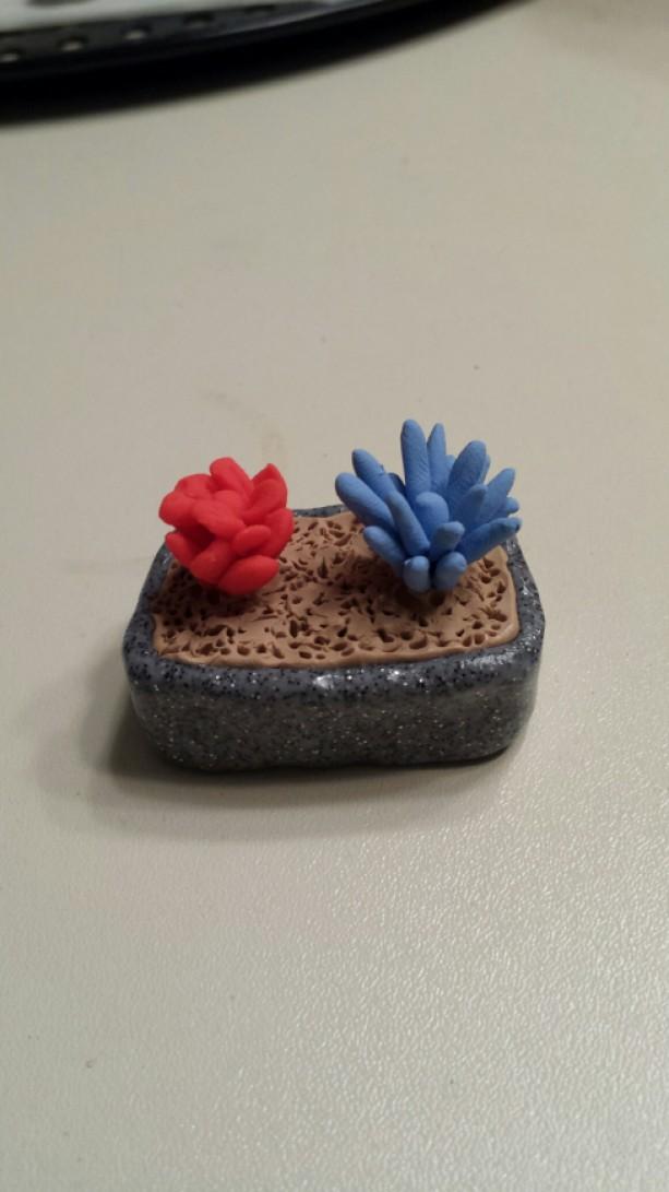Dollhouse Miniature Cactus Bonsai