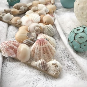 Small Seashell Letter