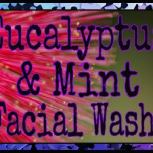 Eucalyptus Mint Face Wash