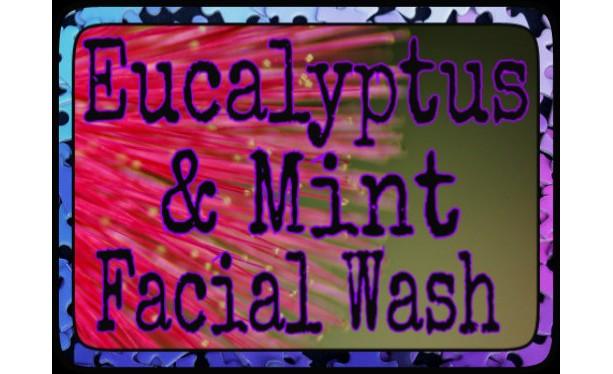Eucalyptus Mint Face Wash